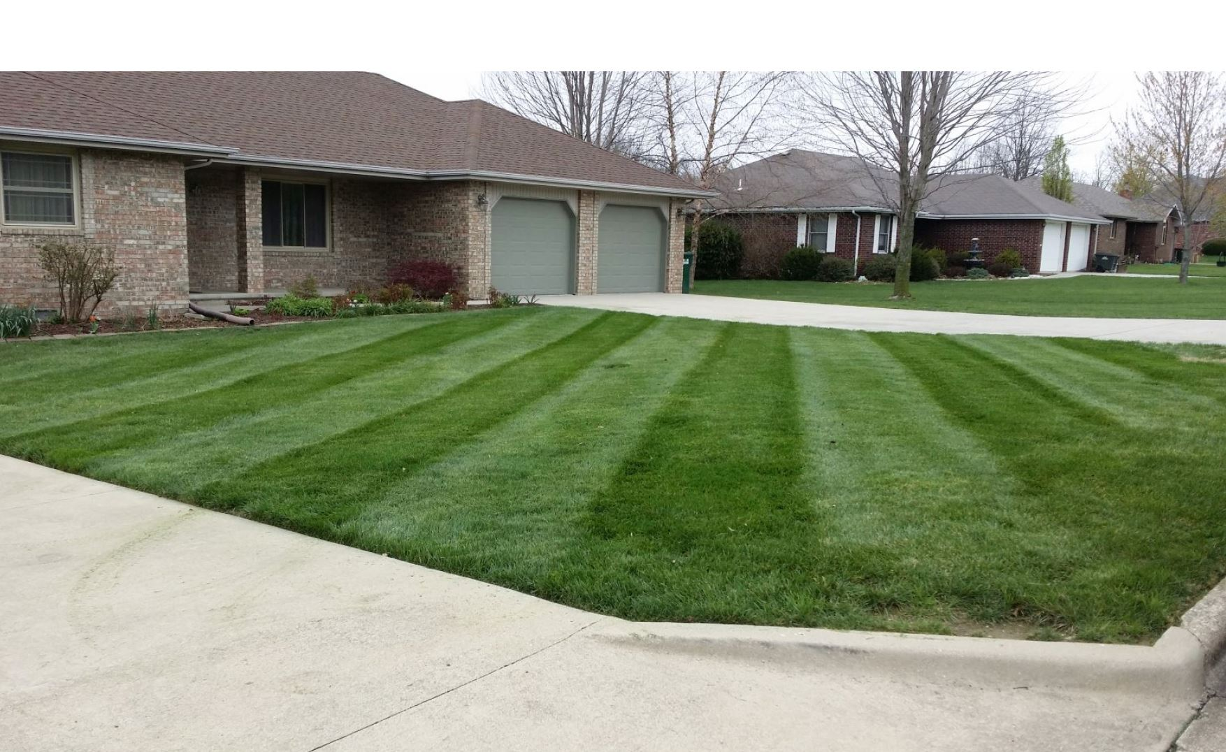 Help Your Lawn Thrive Year-Round